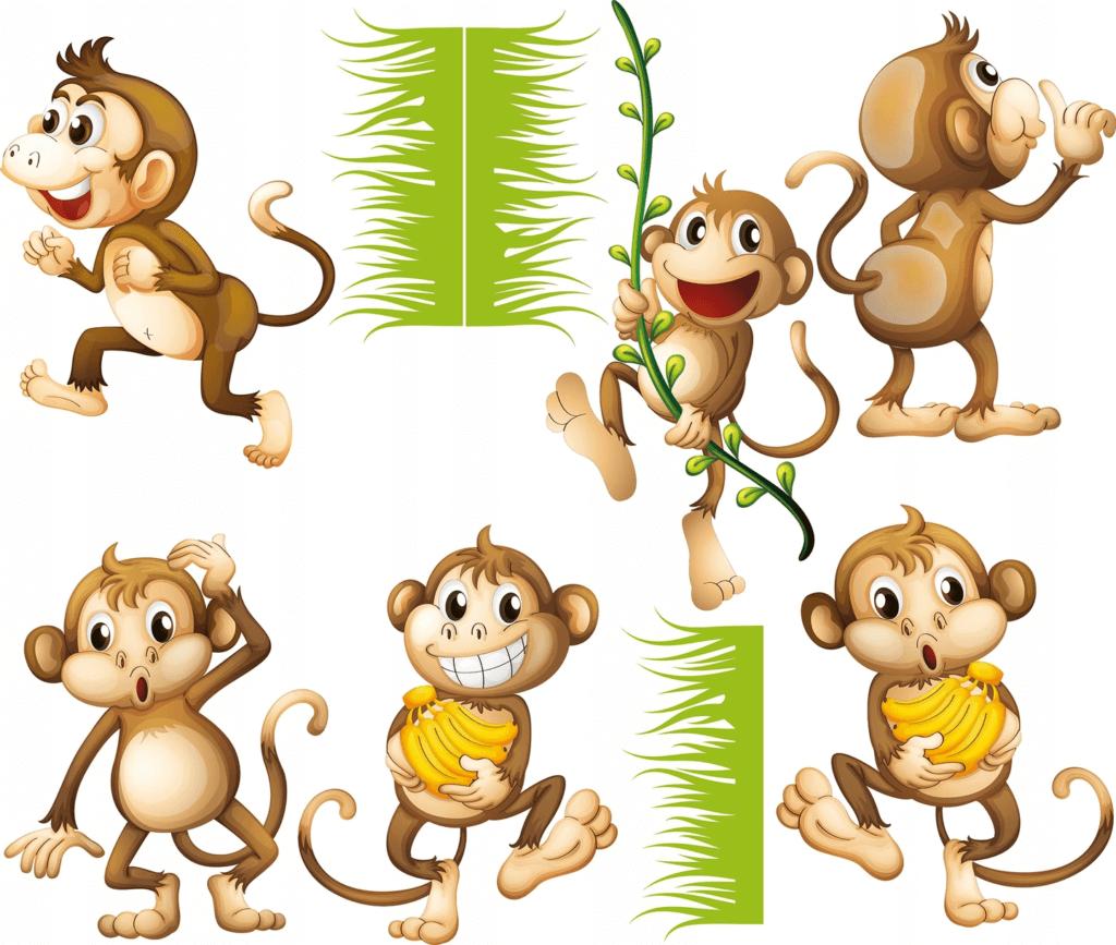 naklejka na ścianę małpki